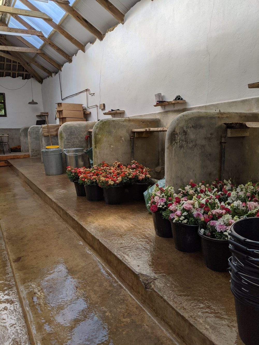 The cowshed where we make our bouquets, with a floor that can be wet-washed and drained