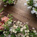 Field Flowers: Selection Box (18 stems)