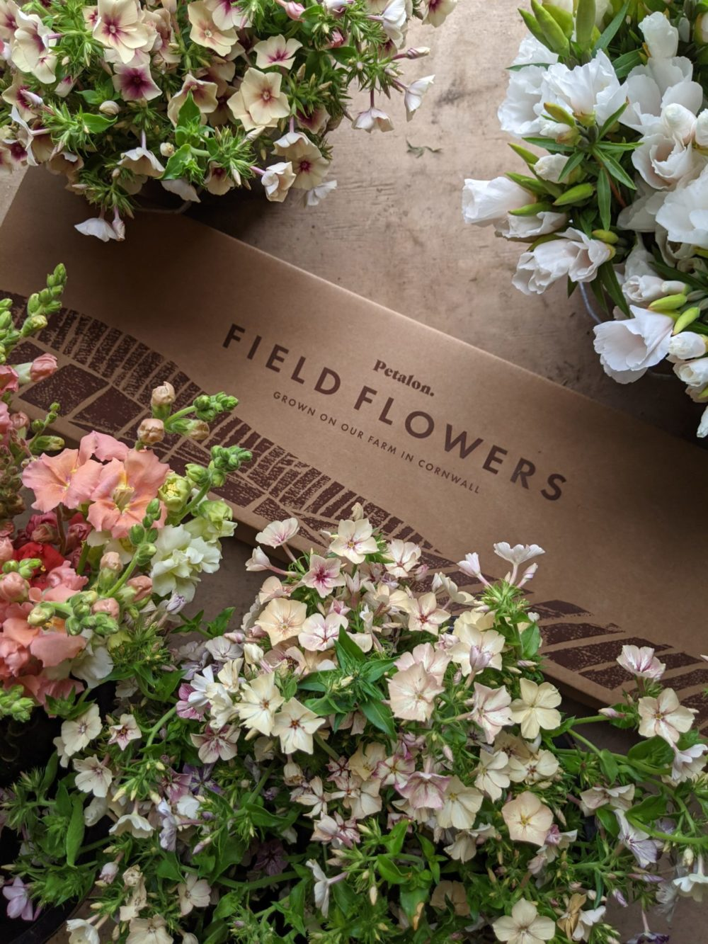 We launched our Field Flowers subscriptions this month